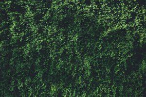 Как минимализм помогает вернуть контроль над собственной жизнью