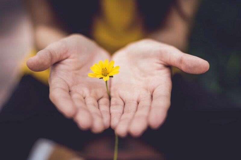 3 шага к прощению