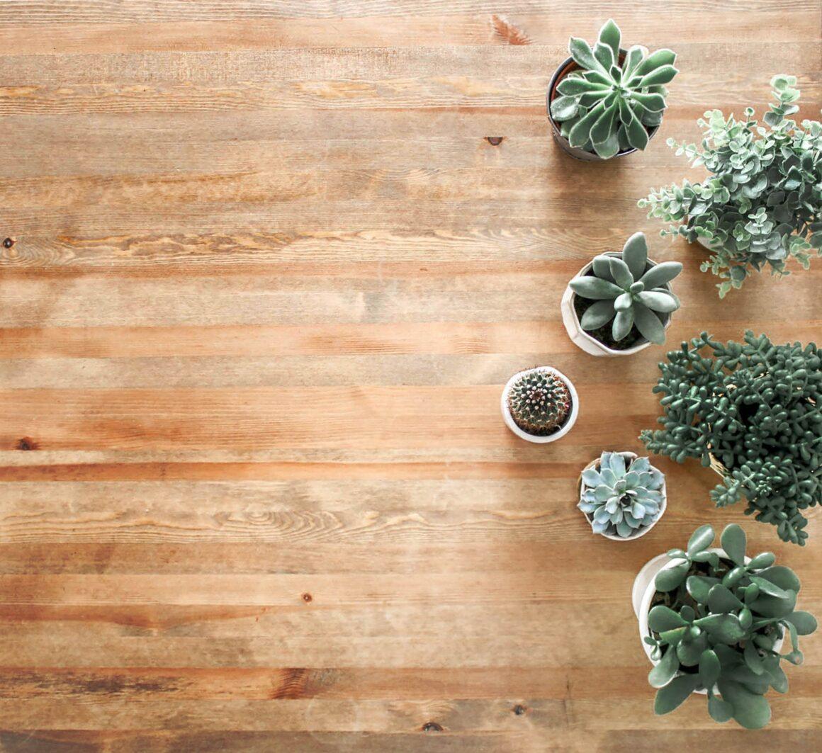 Основы фен-шуй: 5 простых советов, как преобразить ваш дом