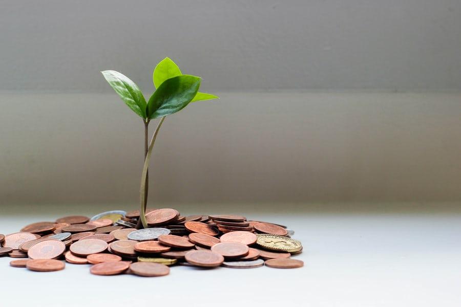 Финансовая этика — шаг к финансовой осознанности