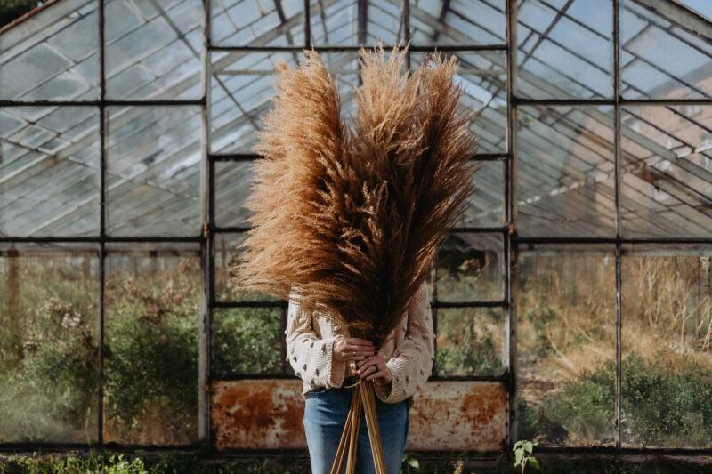 Минимализм как способ замечать прекрасное в обычном