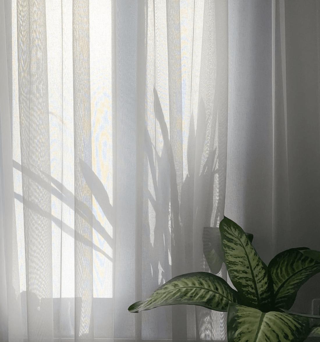 Интервью с минималистом №145: Елизарова Аня