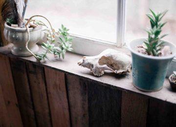 Семь смертных грехов минималиста